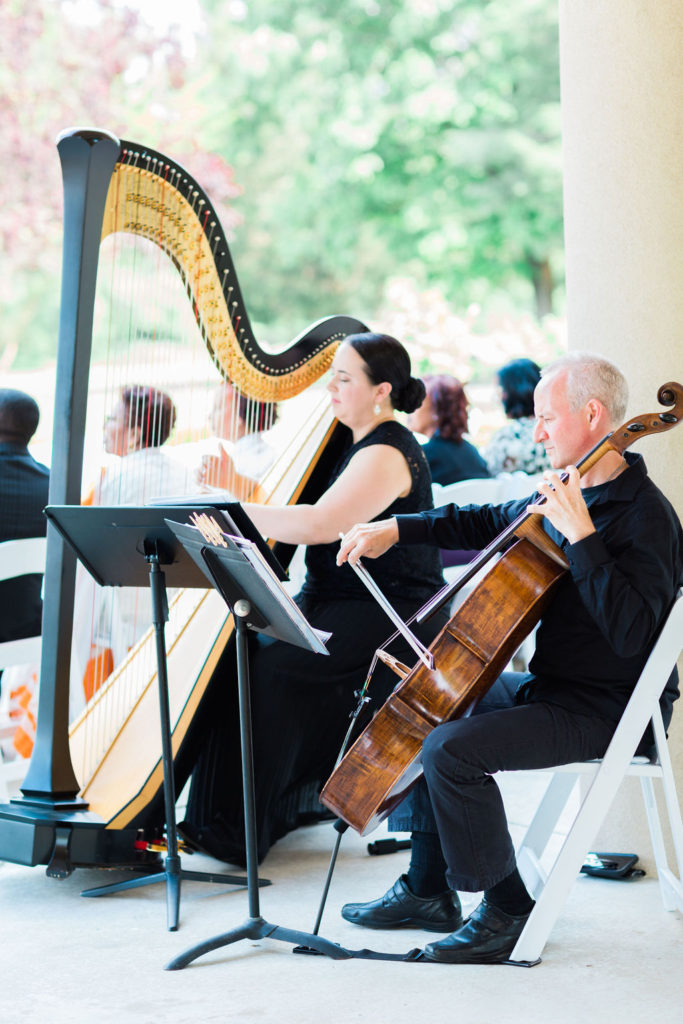 washington dc string duo statuesque events